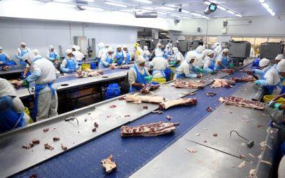 Carne bovina a China: Desde Azul al Puerto de Shanghai