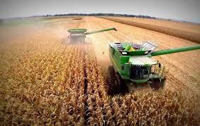 Estiman una cosecha de 140 millones de toneladas para la campaña2019-2020 en curso