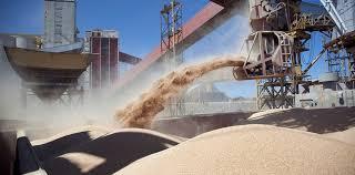 La molienda de soja entre abril y septiembre es la más alta de los últimos cuatro años