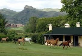 Por la incertidumbre política, continúa baja la actividad  inmobiliaria  rural
