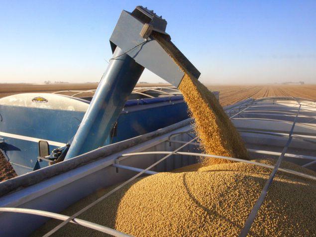 La superficie destinada a soja podría aumentar en 200.000 hectáreasdurante la campaña 2019/20