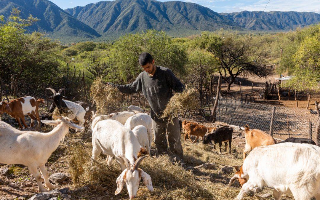 Amplia agenda de trabajo en agricultura familiar