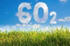 Se llevó a cabo en la Bolsa de Cereales el primer encuentro del  Programa Argentino de Carbono Neutro