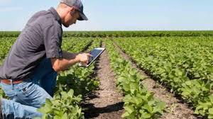 El Censo Agropecuario confirmó que desde 2002 se extinguió un productor agropecuario cada dos horas