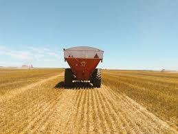La tercera parte del trigo argentino saldrá de la región núcleo