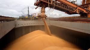 Agroexportadores liquidaron 51% más de divisas que el año pasado
