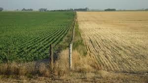 Está disponible el mapa de rentabilidad agrícola