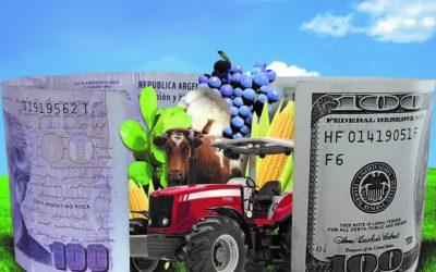 Un estudio revela cuál es el aporte del campo a la economía del país