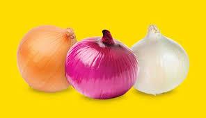 Simplificación en operaciones para exportar cebolla fresca