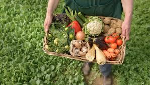 Encuentro sobre diversificación de la producción orgánica