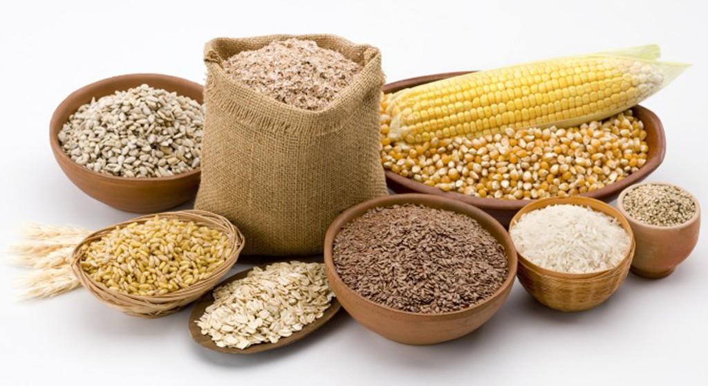 FAO pronostica cosechas récord de cereales para América del Sur en 2019