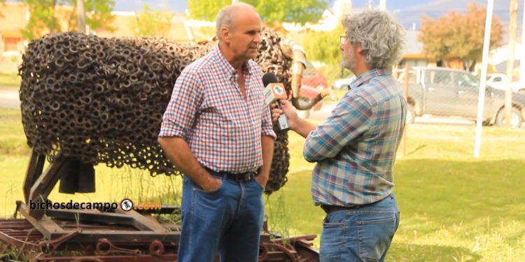 En Patagonia se busca la sustentabilidad para los ovinos