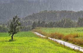 Fuerte oscilación térmica y precipitaciones de variada intensidad sobre el área agrícola