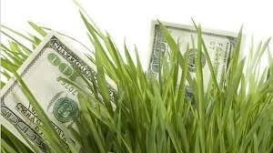 Escasos volúmenes negociados en el mercado de granos local y caída de precios generalizada