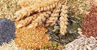 Blindaje tributario aportado por el agro: creció un 160% la recaudación por derechos de exportación