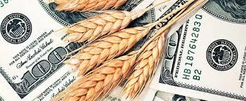 La semana cerró con subas en los valores abiertos por compra de  soja, trigo y girasol