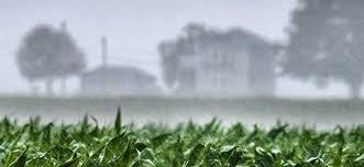 Casi la mitad de la región núcleo tiene una faltante de agua anual mayor a los 250 mm respecto de la media pluvial de los últimos 30 años
