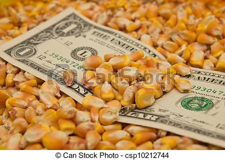 Negocios disminuyeron hoy en el mercado local de granos