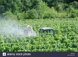 Descontento de agricultores franceses por zonificación para fumigar con fitosanitarios