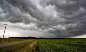 Prevén precipitaciones de variada intensidad sobre la mayor  parte del área agrícola