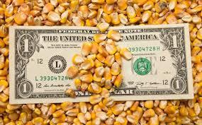 Subieron los precios en el mercado de granos local