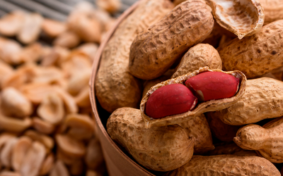 Mucho más que un snack: la leche de maní se suma al boom de bebidas vegetales
