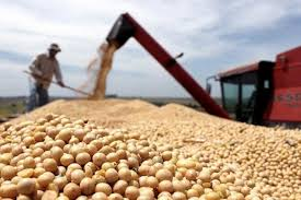 China prometió comprar más granos en Estados Unidos