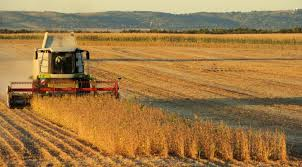 La agroindustria pampeana mostró todo su potencial en 2019 y las  exportaciones crecieron 18%