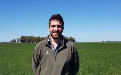 Un doble golpe de bioestimulantes y fertilizantes para que la soja rinda hasta 10% más