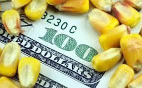 En el mercado de granos local hoy se repitieron los valores de la rueda previa