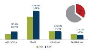 MERCOSUR: Excepcional performance exportadora de carne vacuna durante 2019