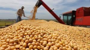 La Bolsa de Cereales porteña elevó la proyección productiva de soja 2019-2020 a 54.5 millones de toneladas