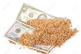 Subas en los precios abiertos de maíz y trigo y caídas para la soja en el mercado de granos local
