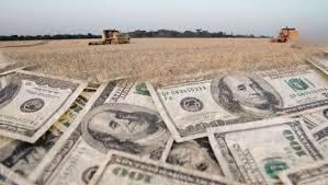 En enero las empresas agroexportadoras liquidaron más de 1600 millones de dólares