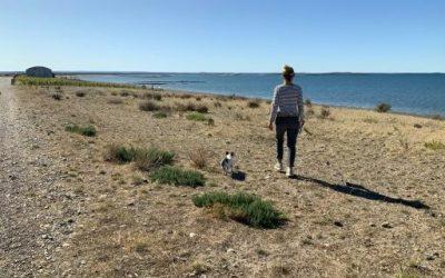 Acostumbradas a la soledad, ciudades aisladas en Patagonia temen la quiebra