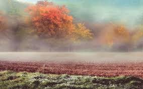 El otoño finaliza con una oscilación térmica con fuerte contraste norte-sur