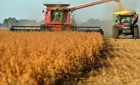 Estiman la cosecha 2019-2020 en 140 millones de toneladas