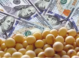 Bajas para soja, trigo y maíz en Chicago: los precios que se negociaron en Rosario