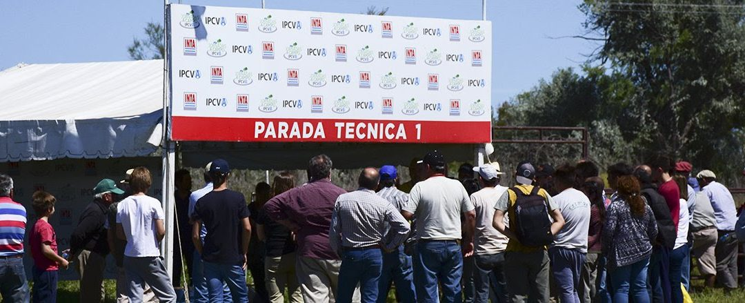 Jornada a campo del IPCVA el 19 de marzo en Río Cuarto, Córdoba