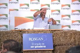 Excepcional remate de Rosgan en Expoagro: alcanzaron las 3.000.000 de cabezas