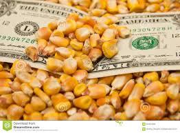 Comprar maíz en Chicago es como comprar acciones de cruceros
