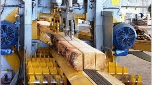 El Gobierno habilitó nuevas actividades productivas para atenuar el impacto de la cuarentena en la economía