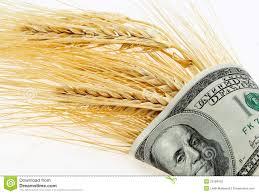 Importantes subas para el trigo en Chicago por el impacto de las heladas en Estados Unidos