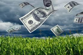 La expectativa de una mejora climática en Estados Unidos presionó al maíz y la soja