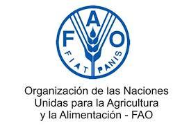 Estados miembros de la FAO aprobaron 3 nuevas prioridades para América Latina y el Caribe