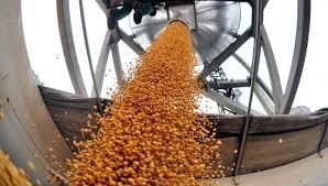 Impactó el USDA sobre los precios del mercado de granos local e internacional