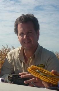 Fertilización balanceada, el camino del trigo para acortar las brechas de rendimiento
