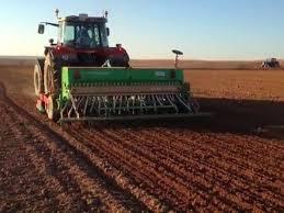 """Advierten que se podrían perder hasta US$ 1.200 millones de la  campaña de trigo por """"controles de cambios"""""""