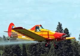 El control de la plaga de langosta también se realiza desde el aire