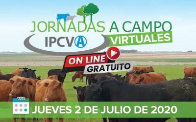Este jueves llega la primera jornada ganadera virtual del IPCVA